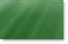 Deep Green Sea - background