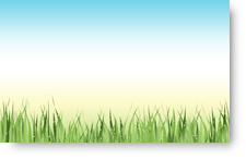 Grass Dew - background