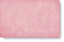 Pink Embossed Roses - background