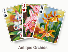 Antique Orchids - card set