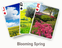 Blooming Spring - card set