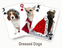 Dressed Dogs - card set
